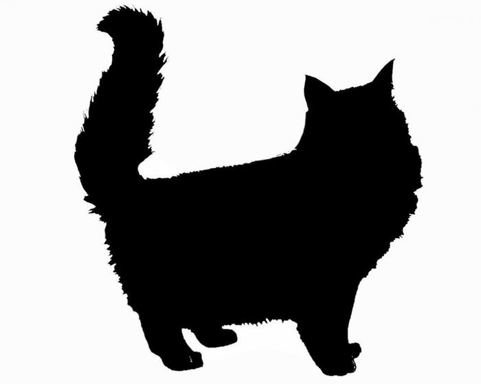 silhouette-katze-1460307033tG5
