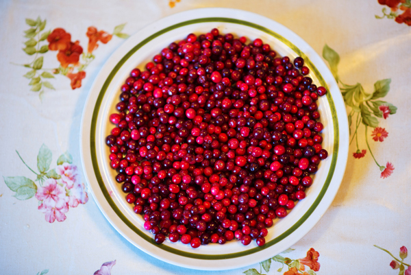 Fat med tyttebær. Foto: Reni Jasinski Wright.