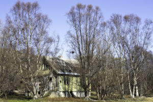 Hus på Årøyholmen. Foto: Tania Lopez